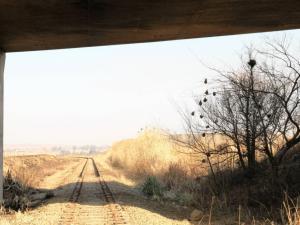 rail theft
